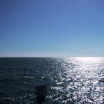 太陽の日差しが眩しいLAの海