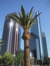 メキシコシティのビル
