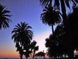 LAロングビーチの夕暮れ