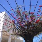 ゲッティーセンターと花