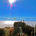 ウユニのサボテン公園で太陽と塩湖と青空