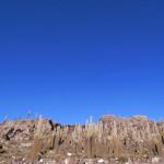ウユニのサボテン公園