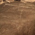 ナスカの地上絵ハチドリ