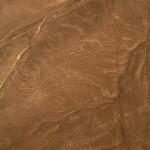 ナスカの地上絵の猿